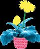 Bloemen KleinGeluk
